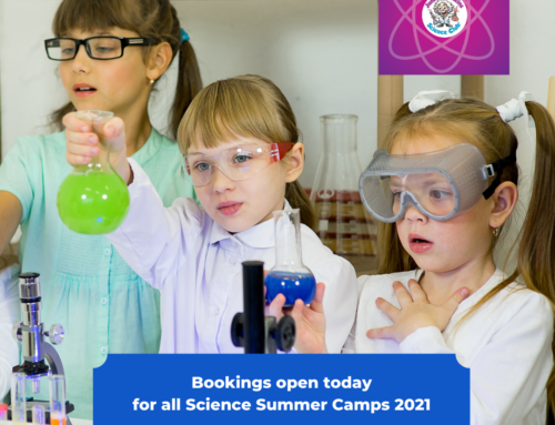 Science Summer Camps 2021 Bookings now open